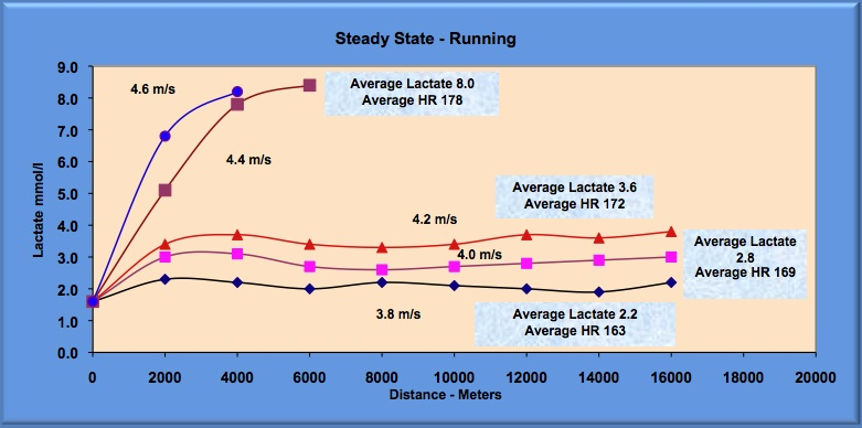 maximal lactate steady state for a runner